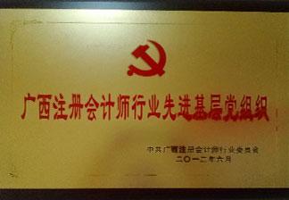 广西注册会计师行业先进基层党组织