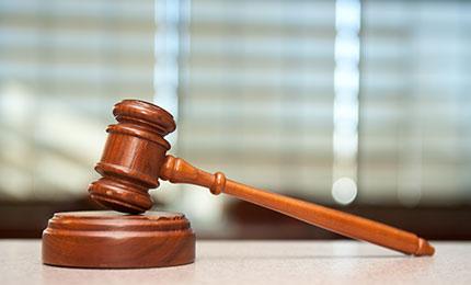 司法鉴定业绩